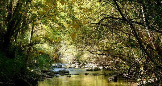 El Rio Genal