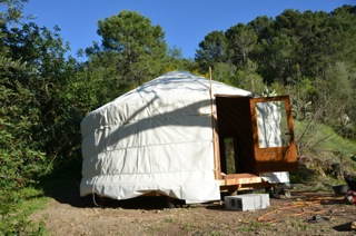 Yurt pitching 12
