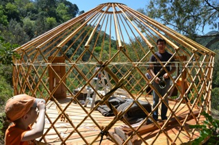 Yurt pitching 6